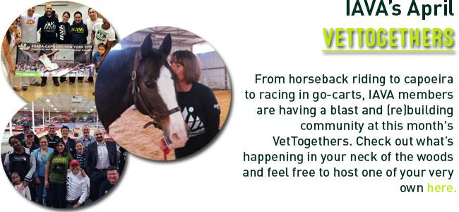 VettogherApril Newsletter2