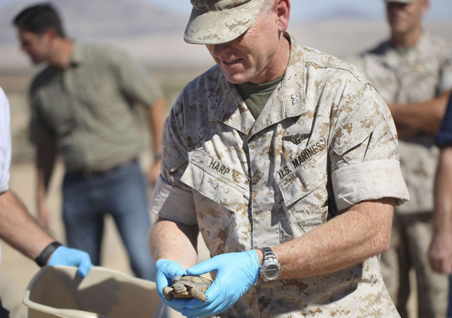 Combat Center Chief of Staff Col. James F. Harp releases a tortoise during the Natural Resources and Environmental Affairs-hosted ceremony for the first release of tortoises from the Combat Center's Desert Tortoise Headstart Program, near Twentynine Palms, California.  | Military Times >>