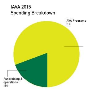 iava spending breakdown graphic